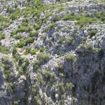 Kalksteinformationen