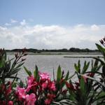 Blick auf Coto Doñana