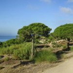 Wanderweg Barbate - Caños de Meca