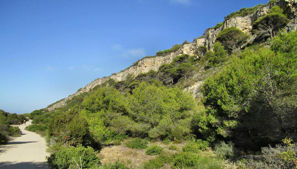Wanderweg Barbate - Los Caños